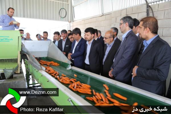 بزرگترین مرکز شستشوی صیفی جات خوزستان در دزفول افتتاح شد