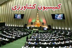 2 نماینده خوزستان عضو کمیسیون کشاورزی مجلس شدند