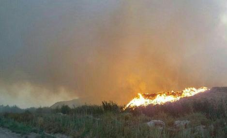 آتش سوزي گسترده در انبارهاي باگاس کارخانه هفت تپه مهار شد